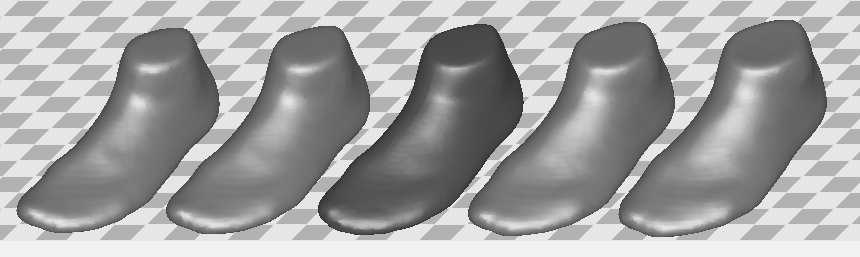 PCA of foot shapes