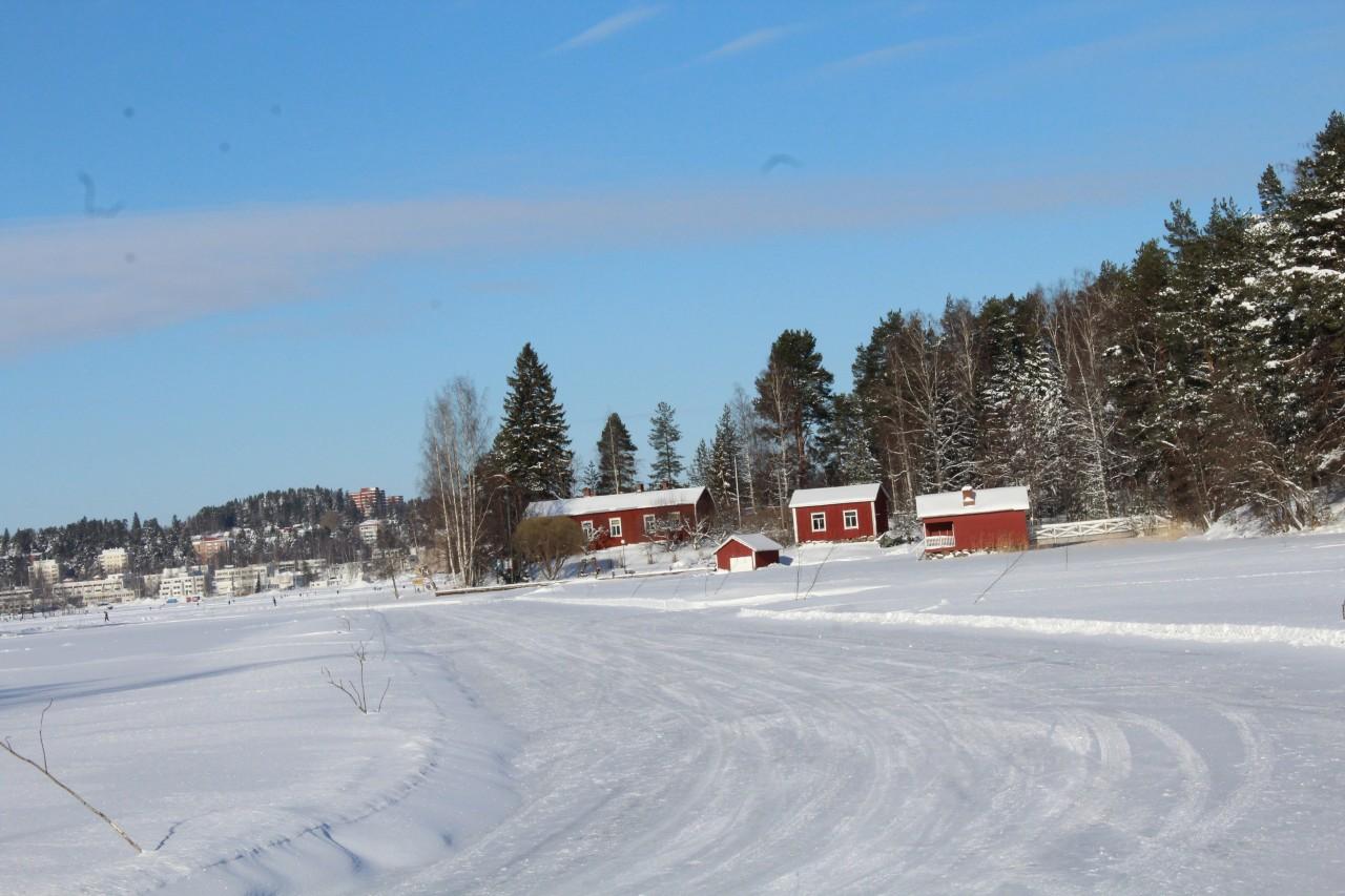 Weihnachtsessen Finnland.Pflegt Der Ruhrgebietsmensch