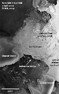 Ein ehemals 15 Kilometer breiter Steg des antarktischen Wilkins-Schelfeises, der stabilisierend auf das Schelfeis wirkte, ist gebrochen.