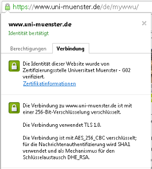 Informationen zum Serverzertifikat in Google Chrome
