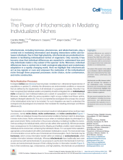 The Power Of Infochemicals In Mediating Individualized Niches