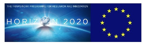 Only H2020-grant-no