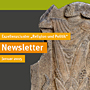 News-newsletter-januar-2015-kfsg