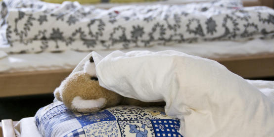 Teddy on a pillow - photo: WWU - Angelika Klauser