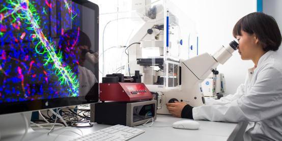 Wissenschaftlerin sitzt am Mikroskop