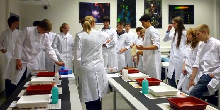 Schülerinnen und Schüler (hier bei einem vorherigen Workshop) entwickeln im MExLab Physik ihr eigenes Hologramm.<address>&copy; WWU/MExLab Physik</address>