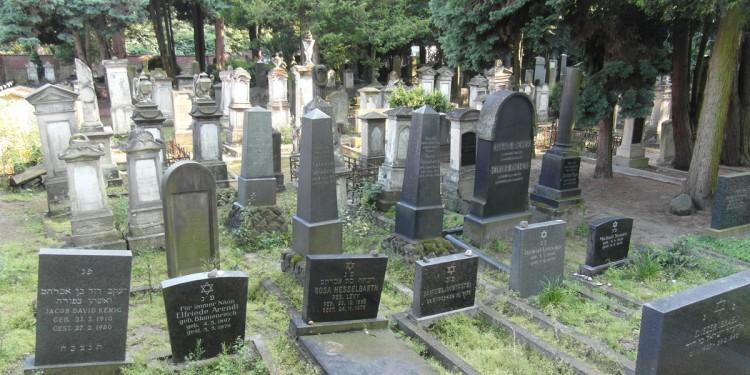 Zum jüdischen Friedhof an der Einsteinstraße verfasste das Seminar für Exegese des Alten Testaments der Universität Münster eine Dokumentation.