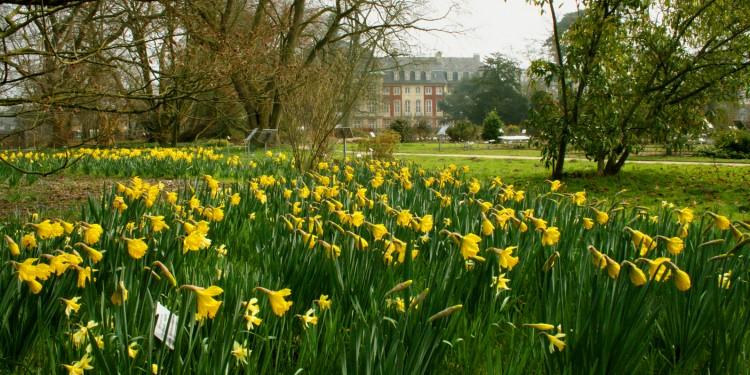 Der Botanische Garten lädt an den Ostertagen zu Spaziergängen ein.
