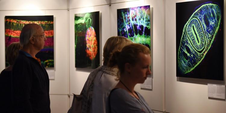 Impressionen der Ausstellungseröffnung<address>&copy; CiM - Peter Grewer</address>