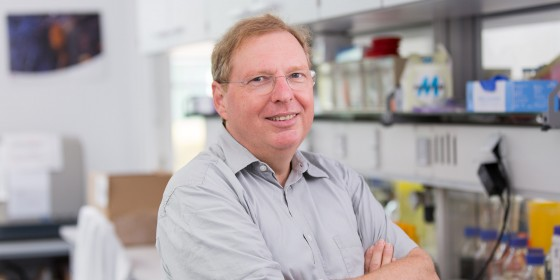 Paediatrician Prof. Johannes Roth is a CiM group leader and Director of the Institute of Immunology.<address>&copy; © CiM - Peter Leßmann</address>