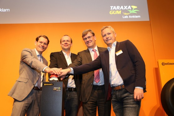 "Giving the symbolic starting signal for the ""Taraxagum Lab Anklam"" (left to right): Continental board member Nikolai Setzer, Prof. Dirk Prüfer (Münster University/Fraunhofer IME), Münster University Rector Prof. Johannes Wessels and Dr. Christian Schulze Gronover (Fraunhofer IME Münster)<address>&copy; Thomas Wiencke</address>"