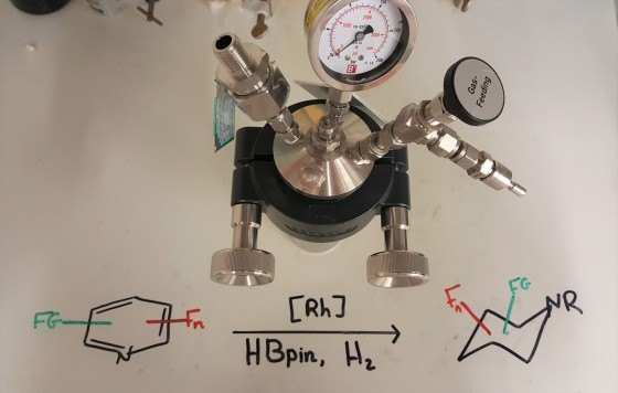 Pressure vessel (autoclave) for the hydrogenation of fluorinated pyridines. The reactions are carried out at a hydrogen pressure of 50 bar (normal atmospheric pressure is 1 bar).<address>© Frank Glorius</address>