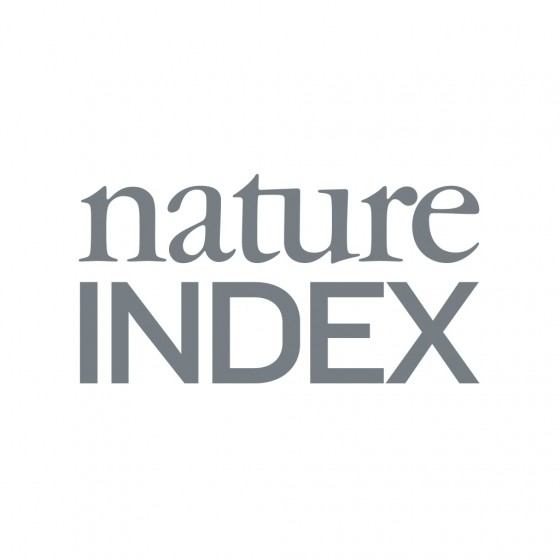 The &quot;Nature Index&quot; considers publications in major scientific journals from the natural and life sciences.<address>© Nature Index</address>