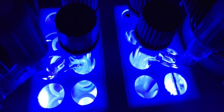 Synthesis of isoquinuclidines by using the blue LED-enabled photochemistry<address>© Jiajia Ma</address>