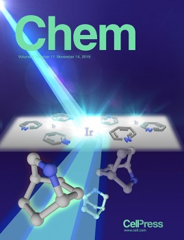 The researchers' study was selected for the cover of the current issue of
